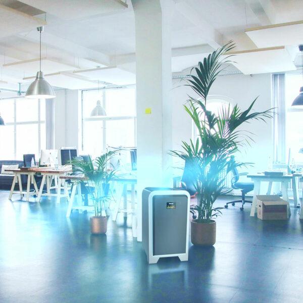 FRIDA reinigt die Luft im Büro